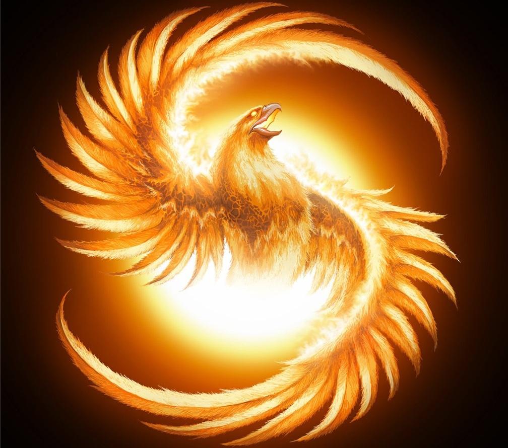 what is life phoenix